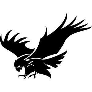 Eagle Attacking Vector Image