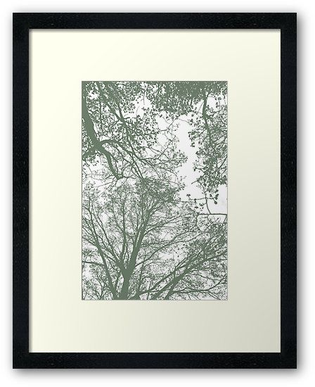 Abstract Trees Framed Art Print by ARTbyJWP from Society6 #framedartprint #arprints #buyart #walldeco #abstract #greenandwhite #minimal ---     Silhouettes of trees on white background. • Also buy this artwork on home decor, apparel, stickers, and more.