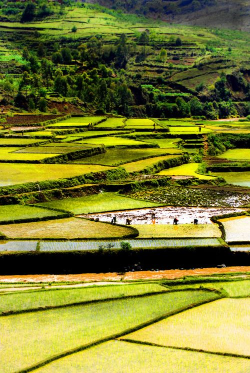 Madagascar - BelAfrique your personal travel planner - www.BelAfrique.com