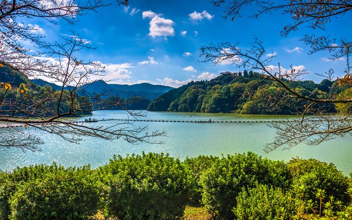 Download wallpapers Lake Shorenji, 4k, hills, forest, Nabari, Japan, Asia
