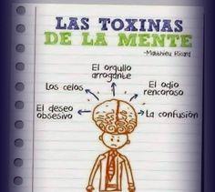Pon a dieta a tus pensamientos! Limpia las toxinas de los malos hábitos mentales, miedos y creencias limitantes http://ift.tt/269ymBD