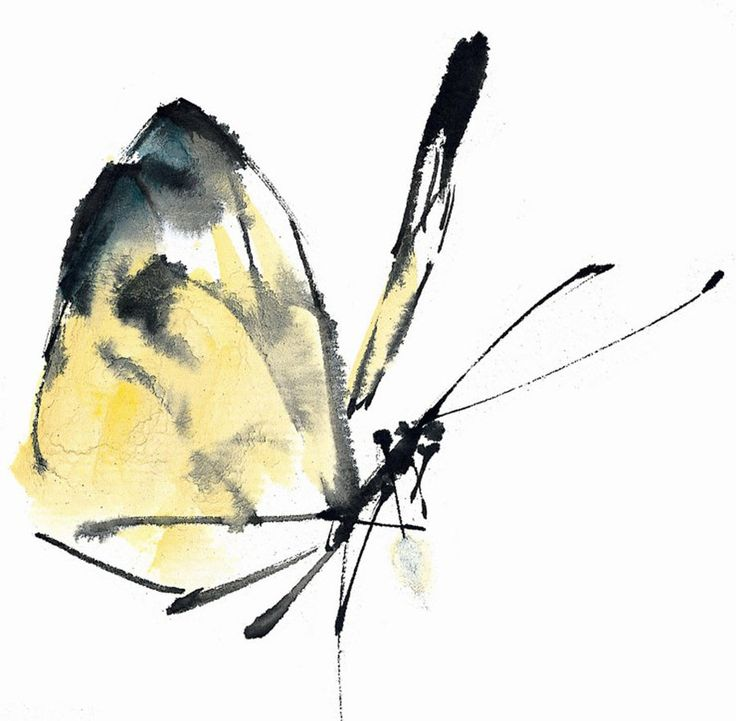 traditional Chinese painting butterfly by glf1993