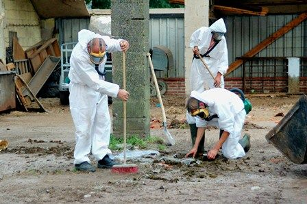 Looking for an asbestos removal organization in Sydney? Contact CHOMP now; we have a group of experts, able to handle little to enormous asbestos occupations and also different poisons For more Call us at 0418 964 596