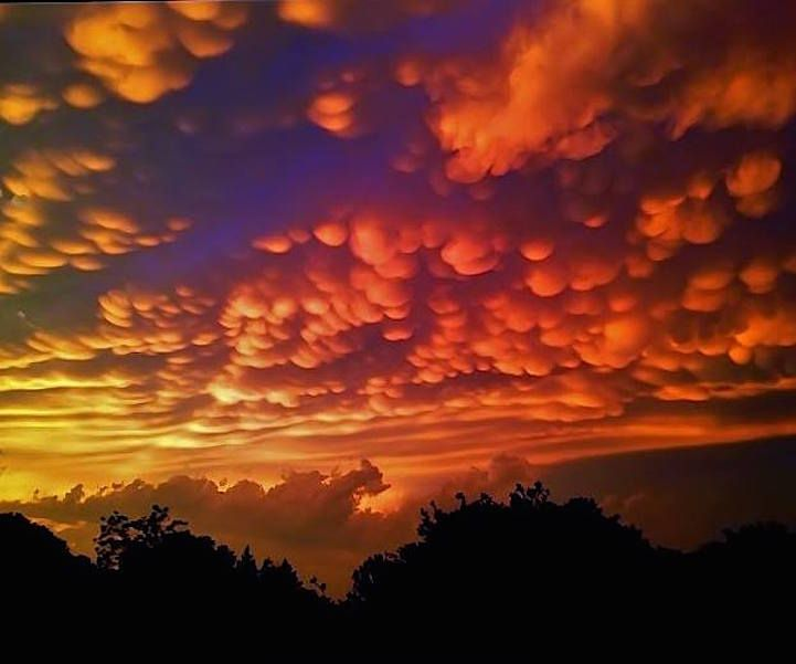 Zeldzame wolken | Paradijsvogels Magazine