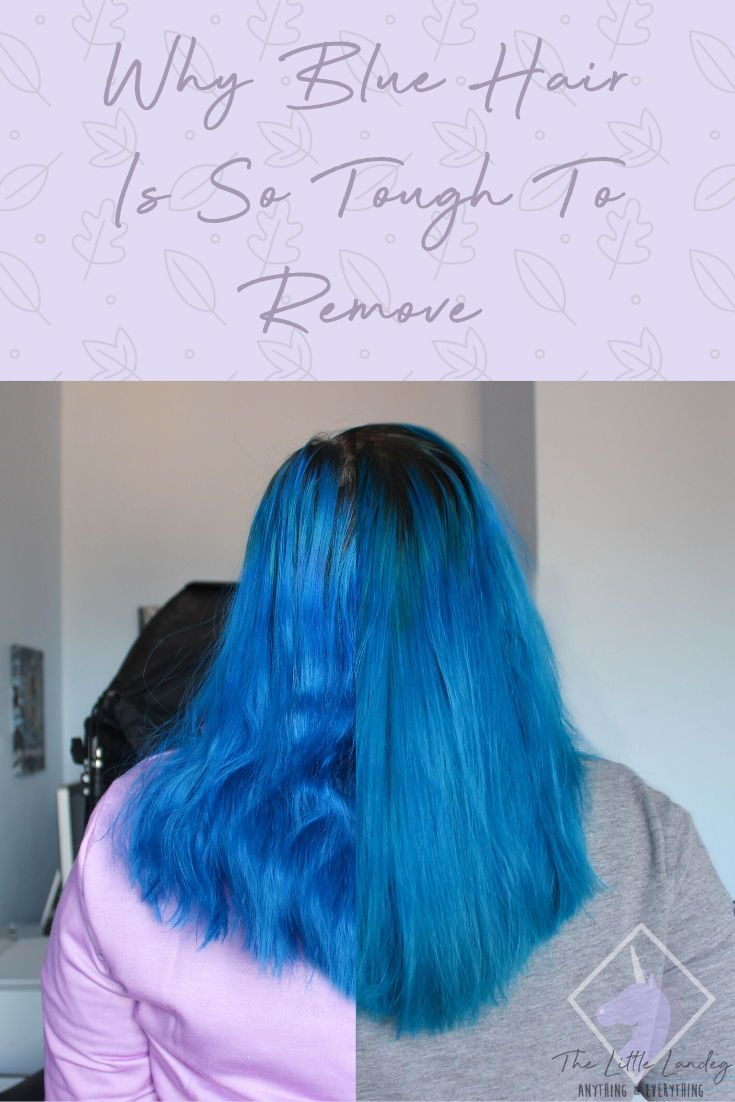 Why Blue Hair Is So Tough To Remove The Little Landeg Dyed Hair Blue Blue Hair Black Hair Dye