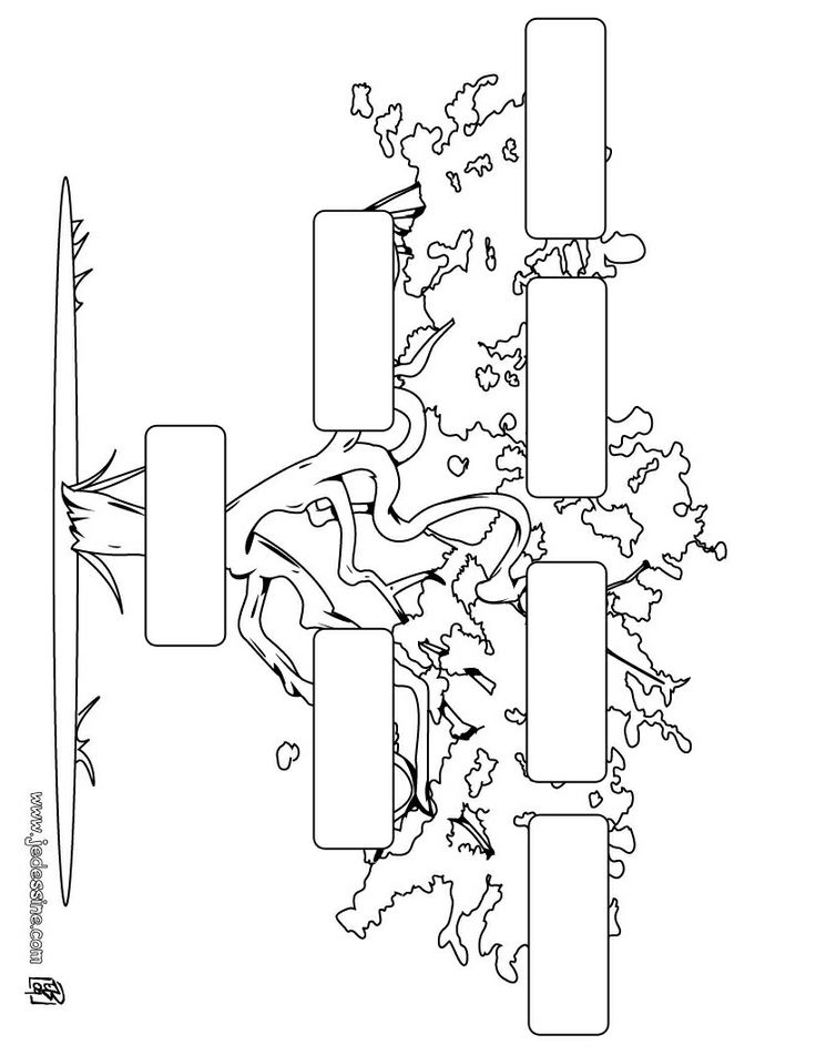 Les 25 meilleures id es de la cat gorie faire son arbre g n alogique sur pinterest projets d - Arbre genealogique dessin ...