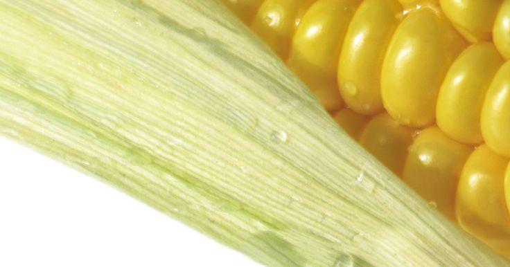 Cómo deshidratar granos de maíz. Deshidratar granos de maíz para usarlos en el futuro es una gran manera de utilizar los sobrantes de la mazorca de maíz y evitar el desperdicio de este alimento. Puedes usar los granos deshidratados para preparar palomitas de maíz caseras o rehidratarlos para tener maíz fresco luego. Sin importar el objetivo final, si decides secar y almacenar ...