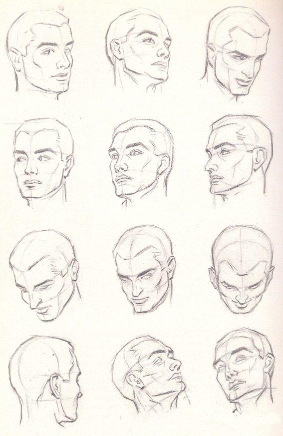 head anatomy poses, pencil drawing