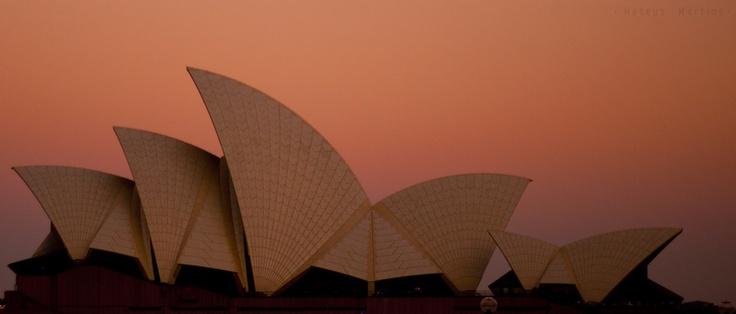 #architecture #construction #opera house #wonderful
