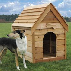 17 Best 1000 images about A pallet dog house on Pinterest Pallet wood