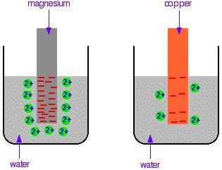 Best explanation of half cells