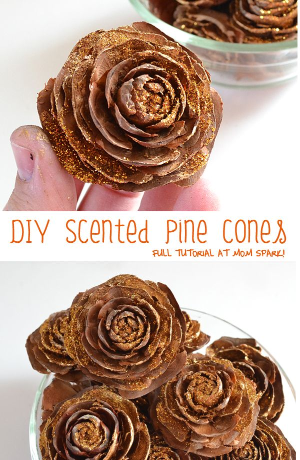 25 best ideas about pine cone art on pinterest pine cone wreath zinnia flower ideas and pine - Crafty winter decorations with pine cones ...