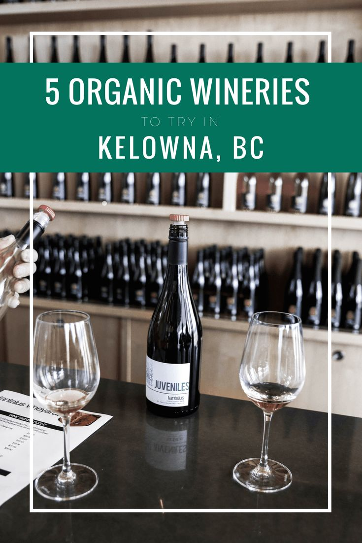 We enjoyed our own wine tasting adventure and visited 5 local organic vineyards in Kelowna BC. Check out our favourite wines from the experience.