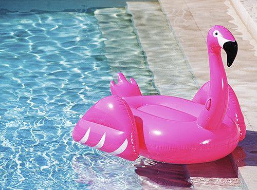 Flamingo Pool Float Luxury pools, Pool floats and Toys