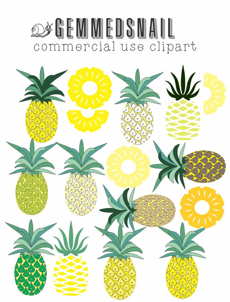 Pineapple clipart, different shades of pineapple and pineapple slices, pineapple images x 16 by GemmedSnail on Etsy