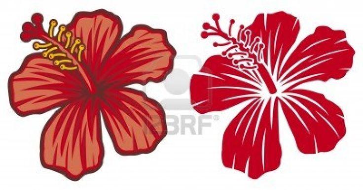 Hermosa flor de hibisco rojo