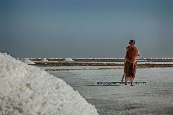 Salt pans in the Little Rann of Kutch