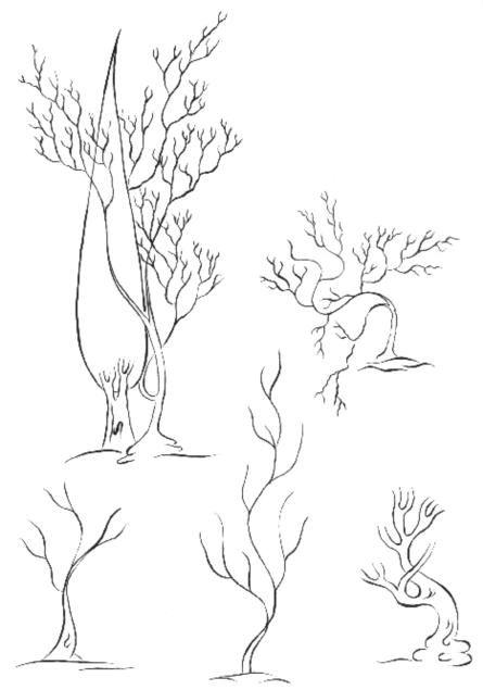 Cahide Keskiner - Minyatür Sanatında Doğa Çizim ve Boyama Teknikleri Kuru ağaçların değişik çizimleri