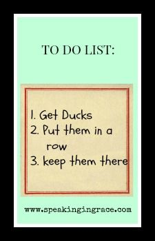 I am not even sure that I have ducks to put in a row. Often the Autism parenting roller coaster we are on makes us aware of how unprepared we are.