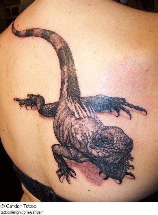 104 besten tattoos echsen lizards bilder auf pinterest eidechsen beeindruckende tattoos und. Black Bedroom Furniture Sets. Home Design Ideas