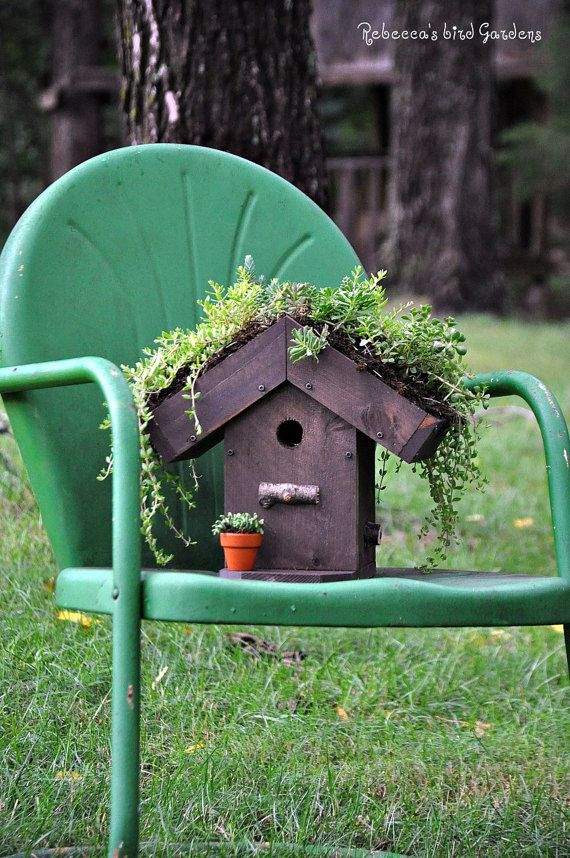 DIY Living Roof Birdhouse by RebeccasBirdGardens on Etsy