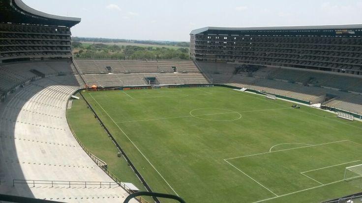 Estadio Palma seca