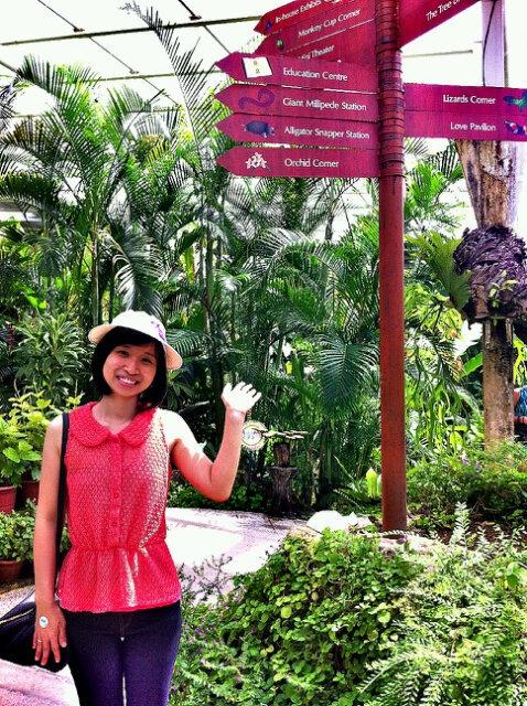 Butterfly Farm, Penang. Foto dari @irenesandranita
