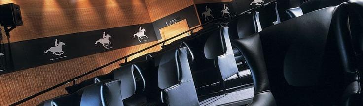 Scotsman Hotel Cinema Screening | Private Cinema - 46 seats tiered  3.6 m x 2.7 x screen