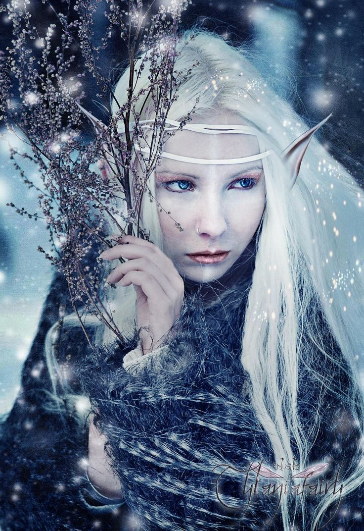 Elves Faeries Gnomes: #Elf.