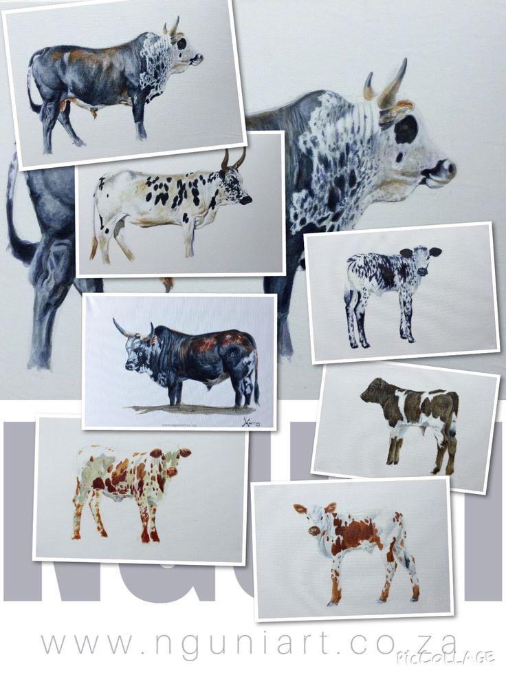 Recent nguni paintings  By Murray  www.nguniart.co.za