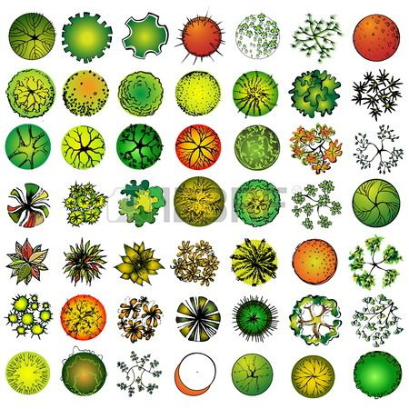 17 Best images about symbols on Pinterest | Trees and shrubs Infographics and Adobe illustrator ...