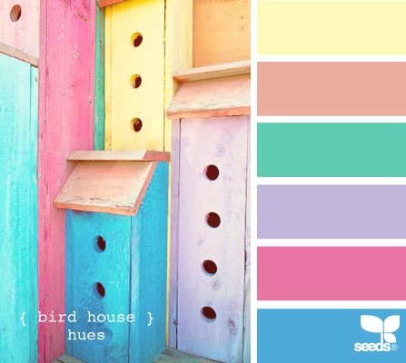 bird house hues