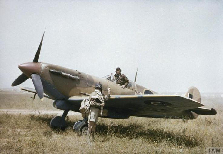 Supermarine Spitfire Mk V and pilots of No. 40 Squadron, South African Air Force, at Gabes in Tunisia, April 1943.