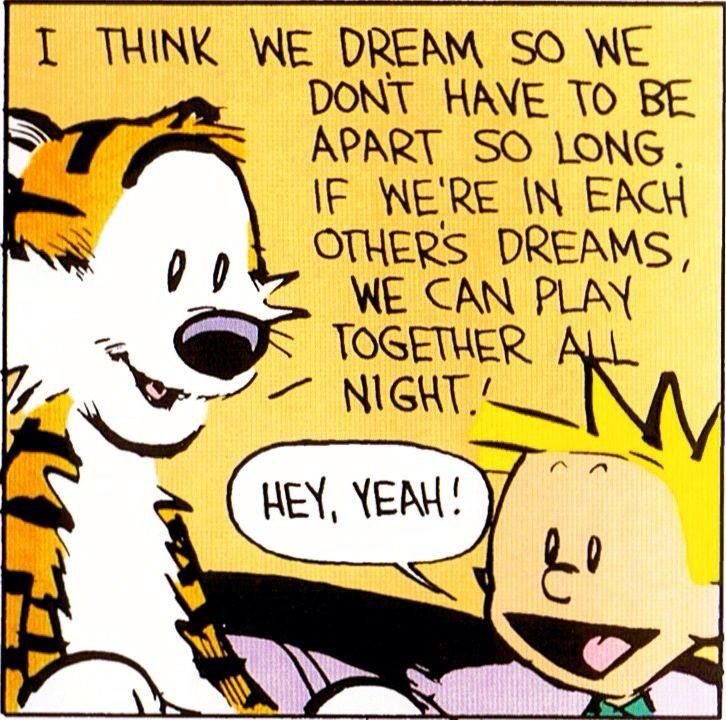 Calvin and Hobbes Quote