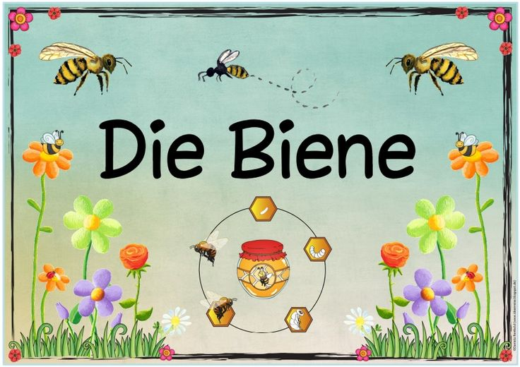 "Ideenreise: Themenplakat ""Die Biene"""