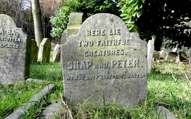 Inside Hyde Park's secret pet cemetery - Telegraph