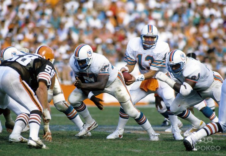 17 Best Images About Miami Dolphins On Pinterest