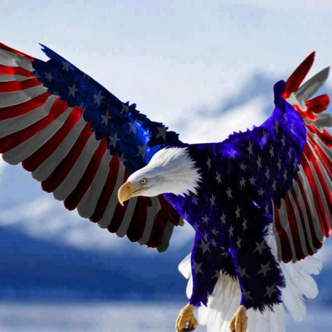 usa flag with eagle