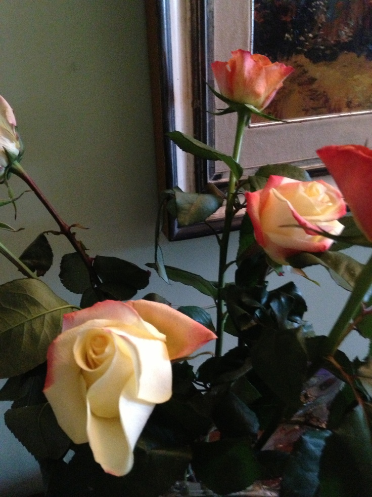 Pale rose and red roses.