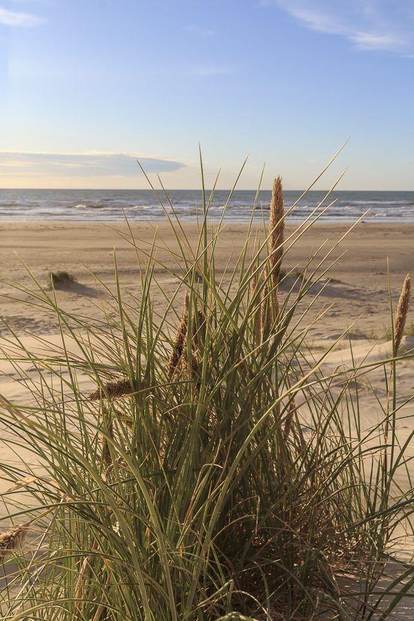 15 Dezember Denmark Dezember Beach Pictures Beach Scenes