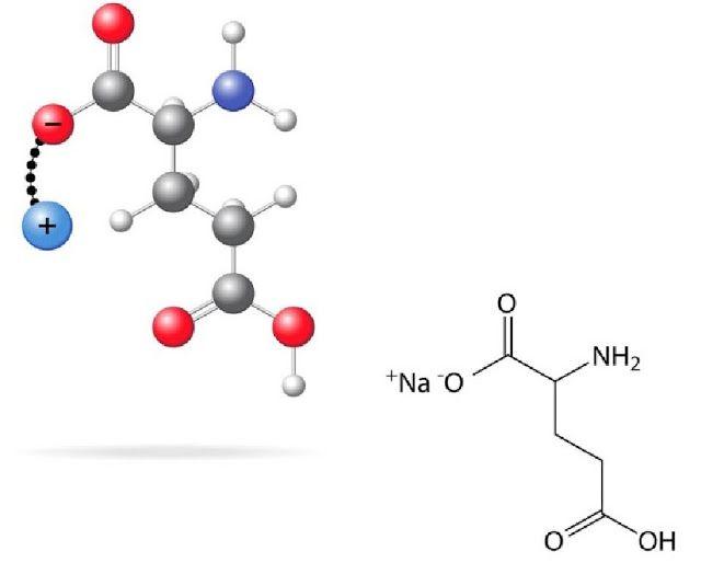GENIO Italiano Giuseppe Cotellessa: Glutammato e recettori / Glutamate and receptors.