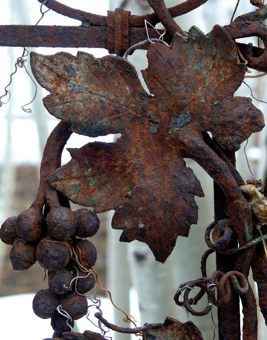 Google Image Result for http://www.photo-dictionary.com/photofiles/list/4021/5401rusty_leaf.jpg