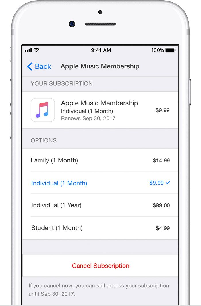 How To Cancel Ios App Subscriptions On Iphone Or Ipad Ios App