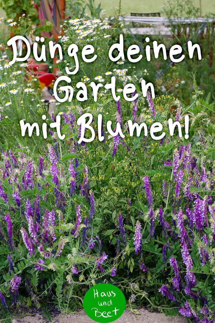 Pflanzen Mit Biologischen Hilfsmitteln Dungen Pflanzen Krautergarten Palette Pflanzen Gemusegarten Anlegen