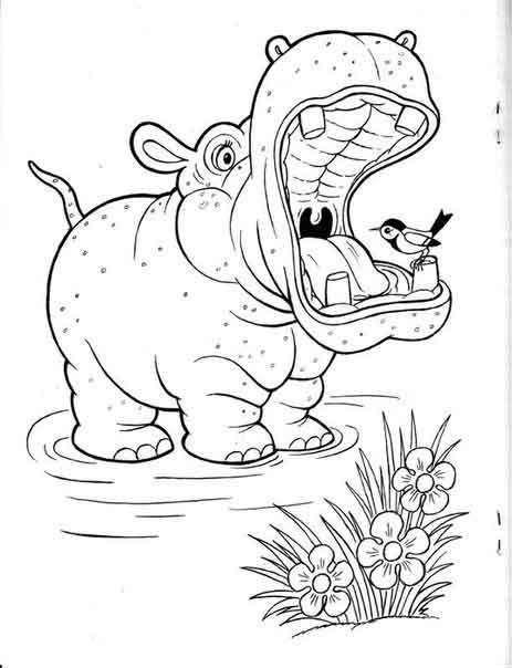 Раскраски с животными | Раскраски, Рисунки, Животные