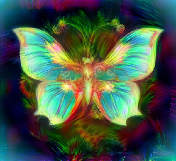 Turquoise butterfly by Mladavid.deviantart.com on ...