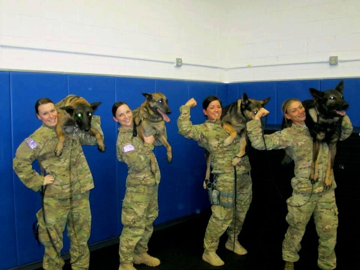 AWESOME K9 Heroes from left to right: A Mckenna Price and MWD Dio, Shannon Hennessy and MWD Katya, Amanda Urie and MWD Hal, Jessie Keller Johnson and MWD Chrach ♥