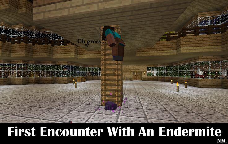 Minecraft Endermite Encounter
