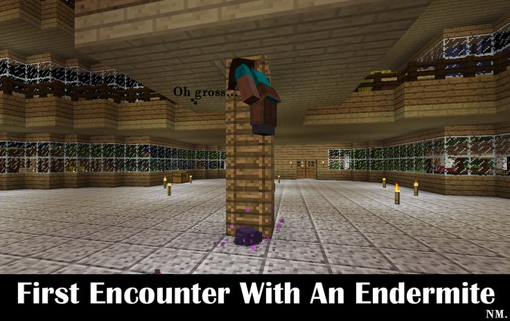 Minecraft Endermite Encounter