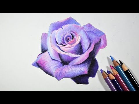 Lavender Rose Flower Drawing Tutorial by fadil. Read full article: http://webneel.com/video/lavender-rose-flower-drawing-tutorial-fadil | more http://webneel.com/video/drawings | more videos http://webneel.com/video/animation | Follow us www.pinterest.com/webneel